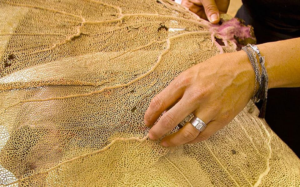 Aviva Stanoff: Exotic & Innovative Surface Design